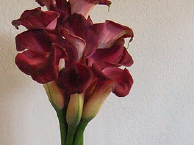 Gėlių kompozija